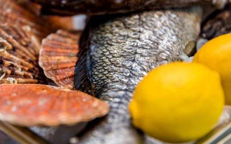 voedsel fotografie van een vis
