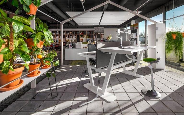 Interieurfoto van een showroom met bureau's en planten